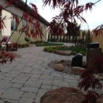 Custom Patio & Landscaping Design