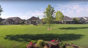 lawn ferilization