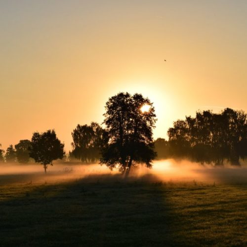 sunrise-1634734_1280-1024x682