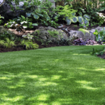 Boise Landscaping Companies