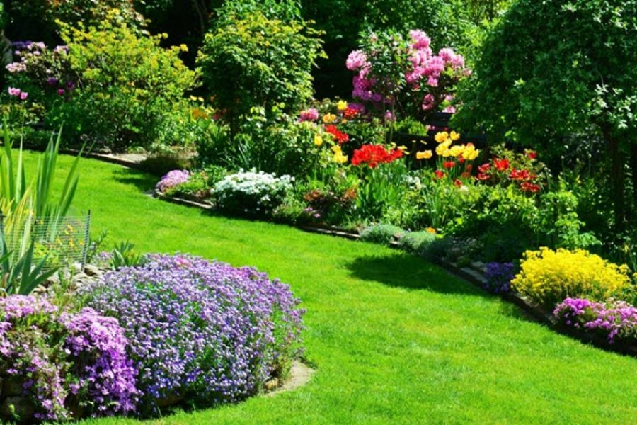 Let Pest Control Companies in Meridian, Idaho Resolve Insect Issues in your Yard